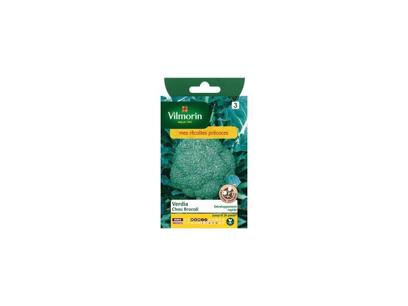 Sachet graines sachet graines chou brocoli verdia