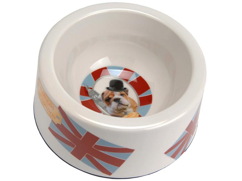 Écuelle pour chien style anglais