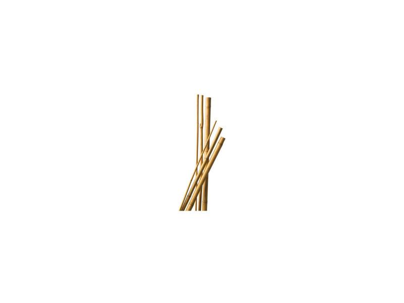 Lot de 10 tuteurs bambou 120 cm diam 6-8 mm