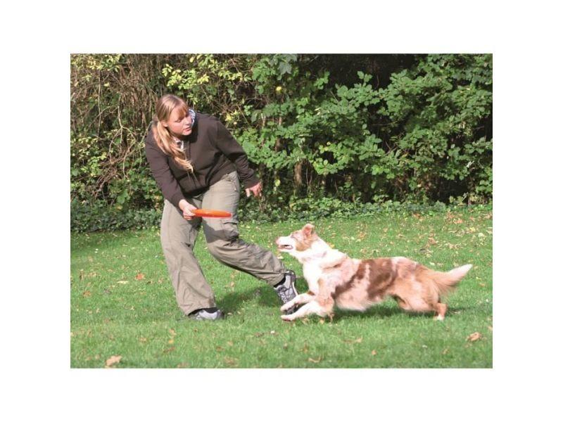Balle - frisbee dog activity dog disc 23cm - coloris aléatoire - pour chien