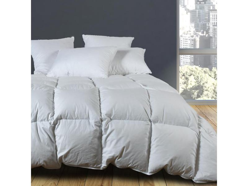 Couette naturelle - légère - 90% duvet 120gr/m² cortina - - 200x200 cm