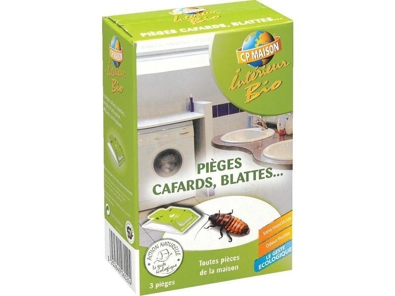 Pièges à cafards et blattes (lot de 3)