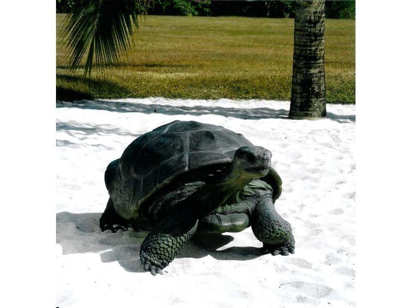 statue de jardin tortue du galapagos en r sine 151 cm. Black Bedroom Furniture Sets. Home Design Ideas