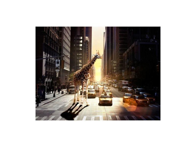 Papier peint - girafe à new york 300x231