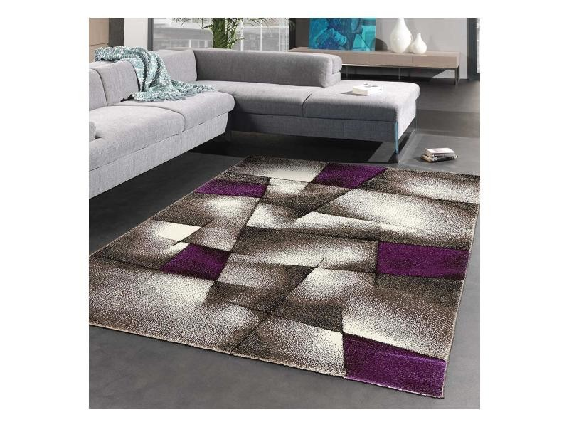 Tapis salon moderne de créateur parlak 3d violet, gris, noir 160 x ...