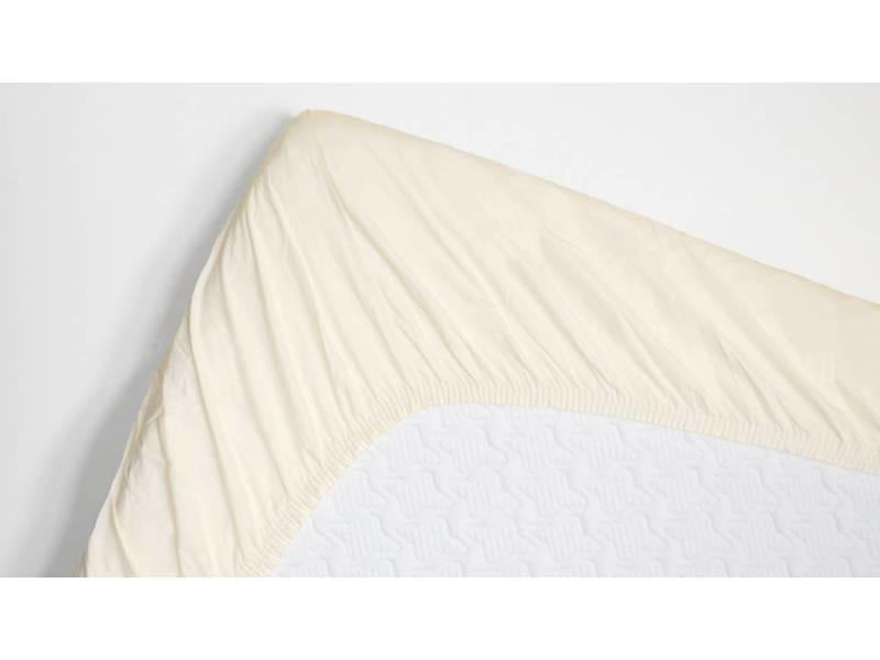 Snoozing - coton - drap-housse - 140x220 cm - ivoire SMUL102155512