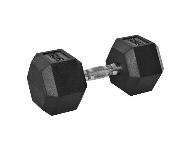 Haltère courte poids 20 kg - entraînement musculaire & haltérophilie - acier caoutchouc noir