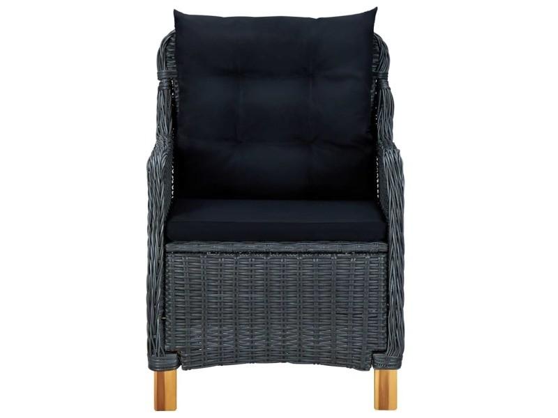 Vidaxl chaises de jardin avec coussins 2 pcs résine tressée gris foncé 313316