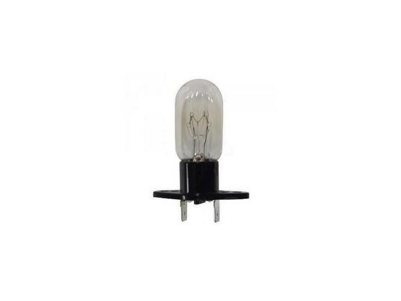 Ampoule 25w t170