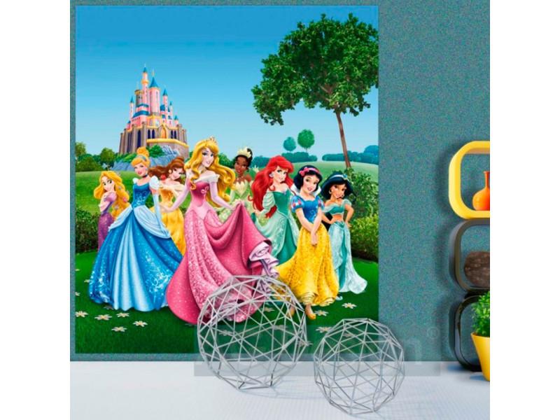 Papier Peint Xl Chateau Au Printemps Princesse Disney Vente De