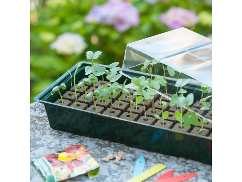 Icaverne - kits de plantation categorie nature kit de mini propagateur 4x16 cellules