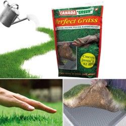 Sac gazon rapide perfect grass canada green 1kg