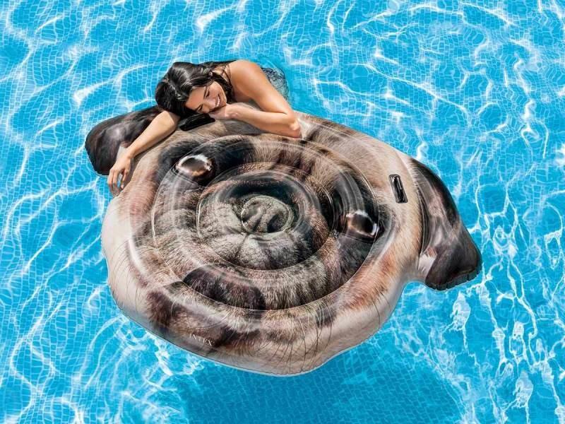 Matelas de piscine chien - intex