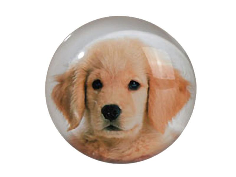 Petit magnet en verre rond chien