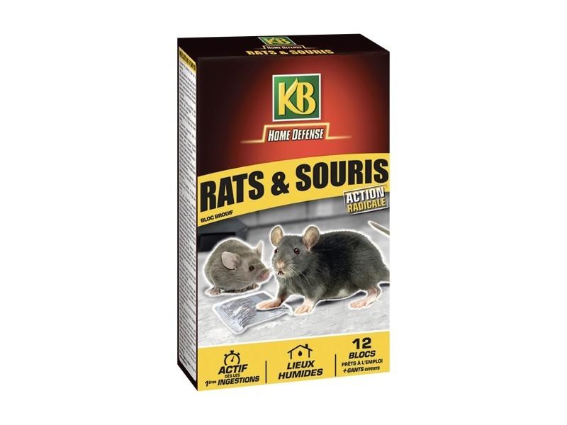 Rat souris blocs 240g (12x20g) 960168