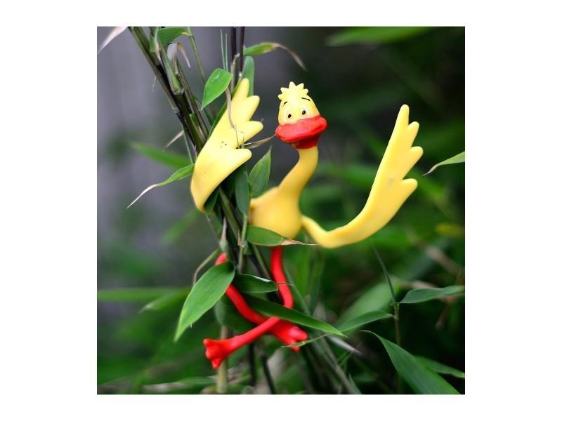 Attache-plantes canards - lot de 4
