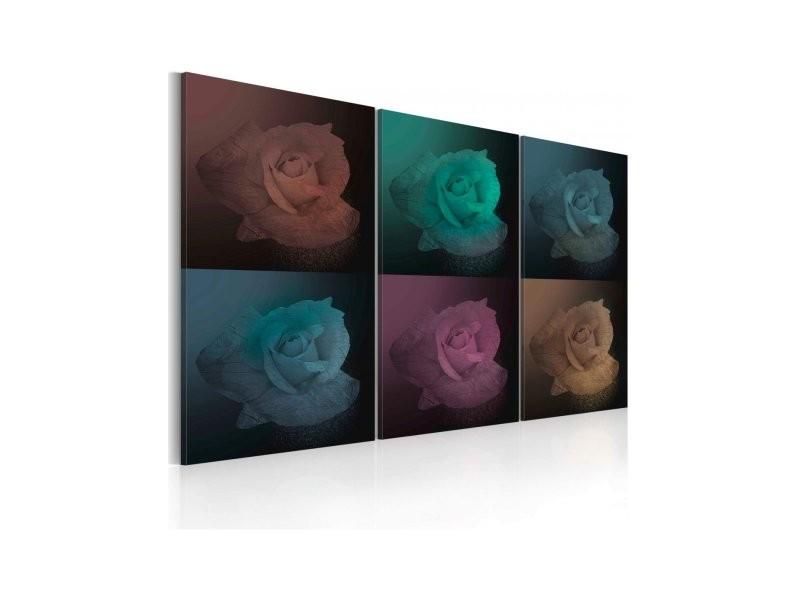 Tableau rose en six couleurs A1-N2615PWD