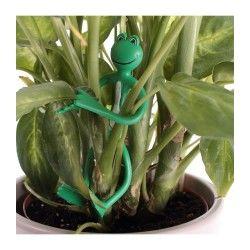 Attache-plantes forme grenouille - lot de 2
