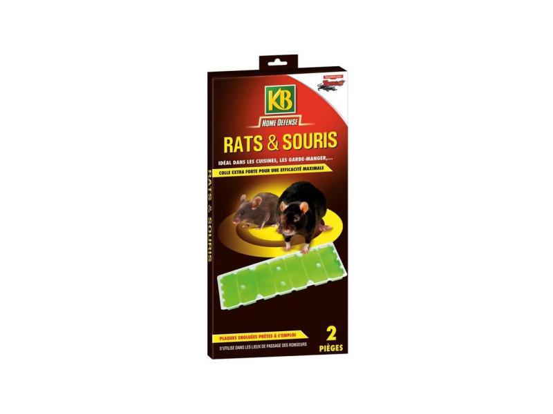 Kb lot de 2 pieges a glu rats et souris