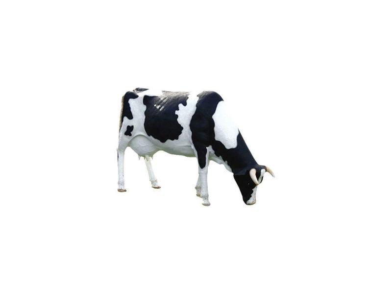 Statue de jardin vache tachetée tête basse en résine 210 cm