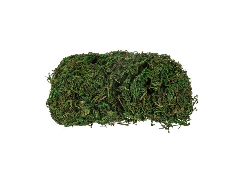 Feeric christmas - sachet de mousse verte pour crèche de noël