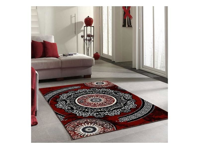 Tapis salon new florida rouge 160 x 230 cm tapis de salon moderne