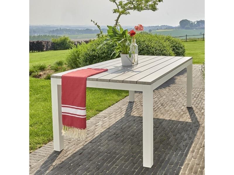 Table de jardin en aluminium blanc et gris 8 places