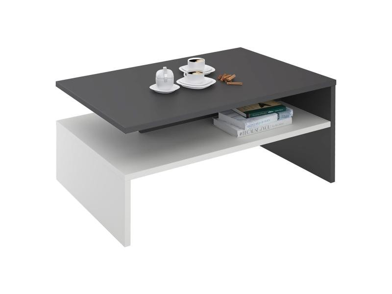 table basse de salon adelaide rectangulaire avec rangement m lamin gris mat et blanc mat. Black Bedroom Furniture Sets. Home Design Ideas