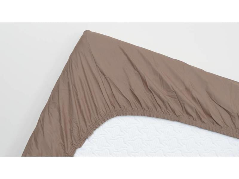 Snoozing - coton - drap-housse - 140x220 cm - taupe SMUL102155012