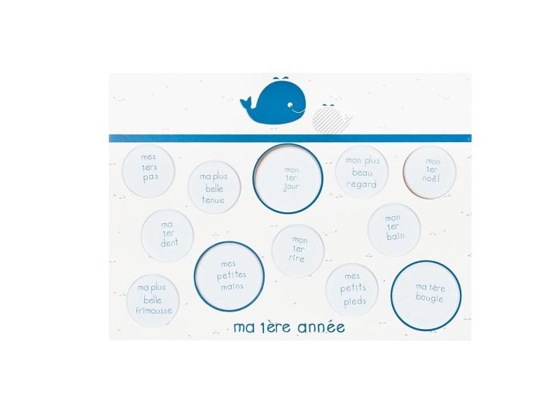 Pèle-mêle photos blue baleine