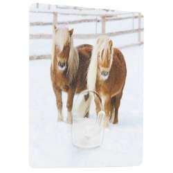 Crochet magique : poneys