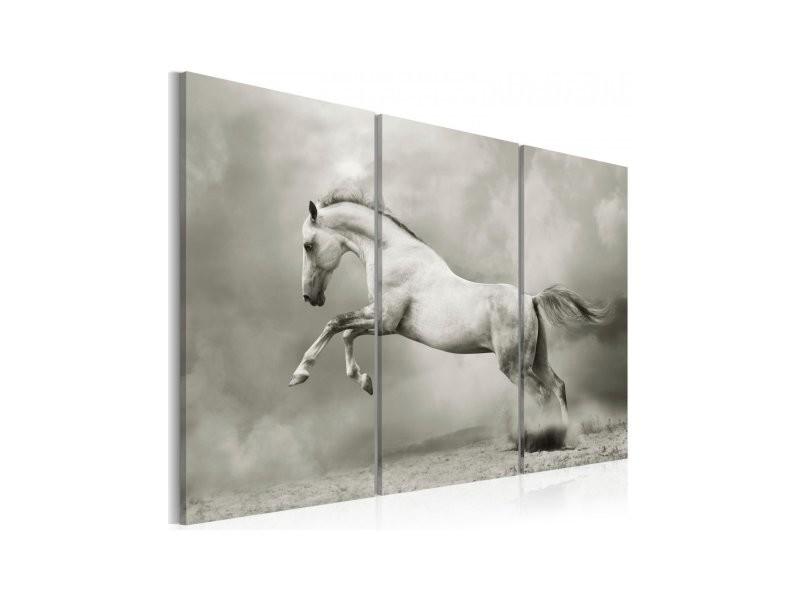 tableau cheval blanc en mouvement 030216 16 vente de artgeist conforama. Black Bedroom Furniture Sets. Home Design Ideas
