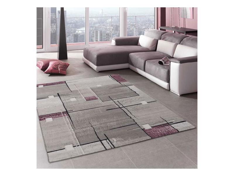 Tapis salon nova violet 160 x 230 cm tapis de salon moderne design ...