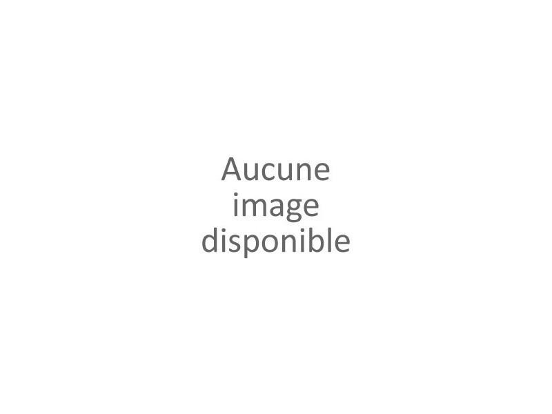 Boulonneuse a choc dtw1001zj version nue HEX-304638