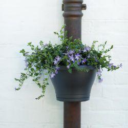 Pot de fleurs corsica clip gouttière noir - elho