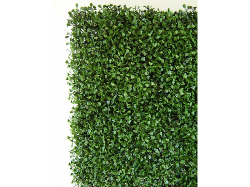 Plaques murales feuillage effet buis coloris vert de 12 dalles - dim dal : 50 cm x 50 cm