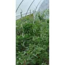 Lot de 10 tuteurs pour tomates
