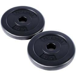 2 x disques d'haltères poids 1,25 kg sport fitness musculation 0701055