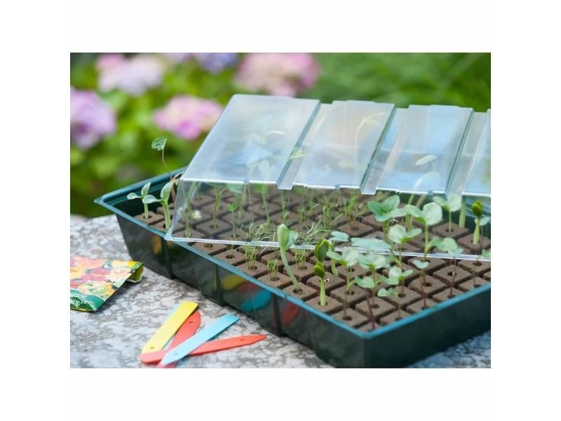 Icaverne - kits de plantation collection nature serre 35 x 23,5 x 11 cm