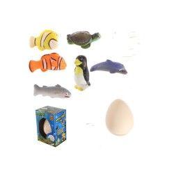 1 oeuf à faire éclore animaux marins