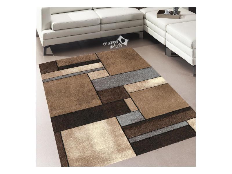 Tapis salon moderne et design brillance 661 beige, marron ...