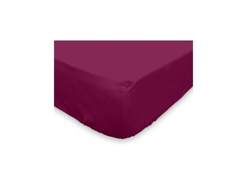 Drap housse soleil d'ocre en coton - l 200 x l 160 cm - violet