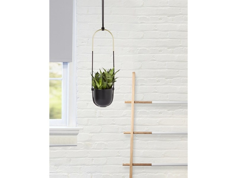 Jardiniere A Suspendre Bolo Pour Mur Et Plafond En Ceramique