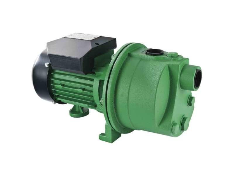 Pompe à eau de surface 600 watts PRJET61