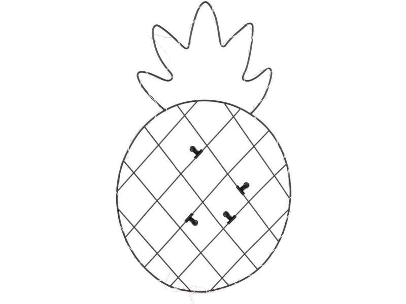 Pêle-mêle photos led ananas