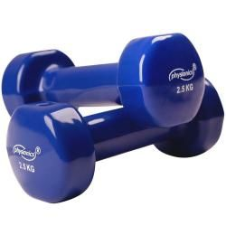 2 haltères vinyle fitness poids 2 x 2,5 kg sport fitness musculation 0701072