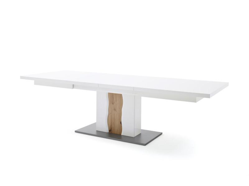 Table rectangulaire en mélamine blanc brillant - l180-280 x h77 x p100 cm -pegane-