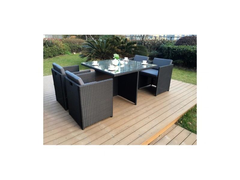 Emejing Salon De Jardin Tresse Conforama Ideas - House Design ...