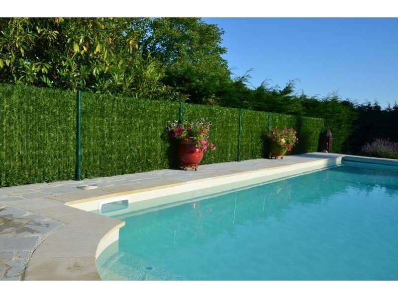 haie eternelle thuya en brins haut de gamme vente de euro castor green conforama. Black Bedroom Furniture Sets. Home Design Ideas