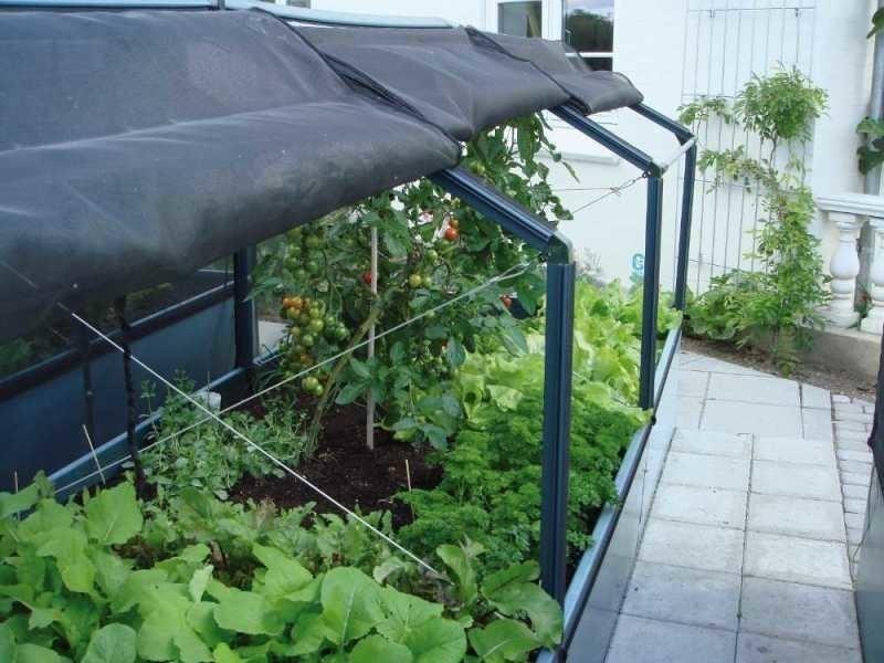 Growcamp - potager de jardin surélevé de 50cm avec serre 3 ...